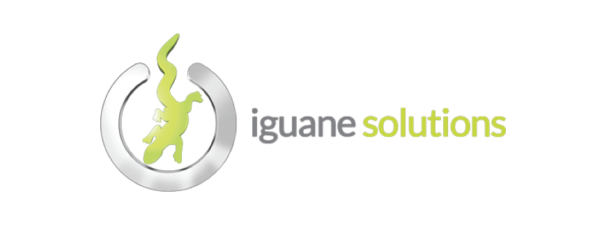 Iguane Solutions